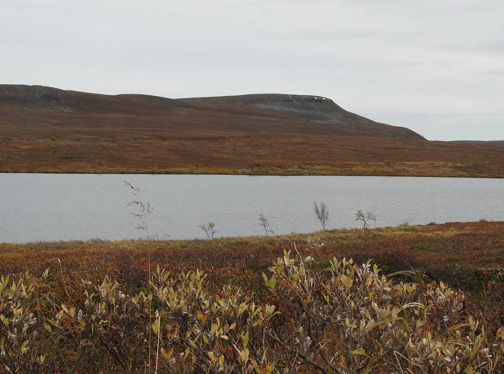 gårder langs geirangerfjorden